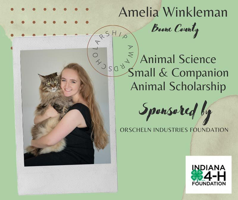 Amelia-Winkleman