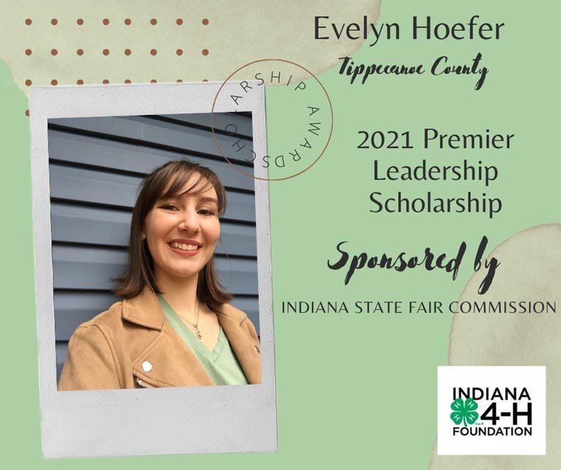 Evelyn-Hoefer