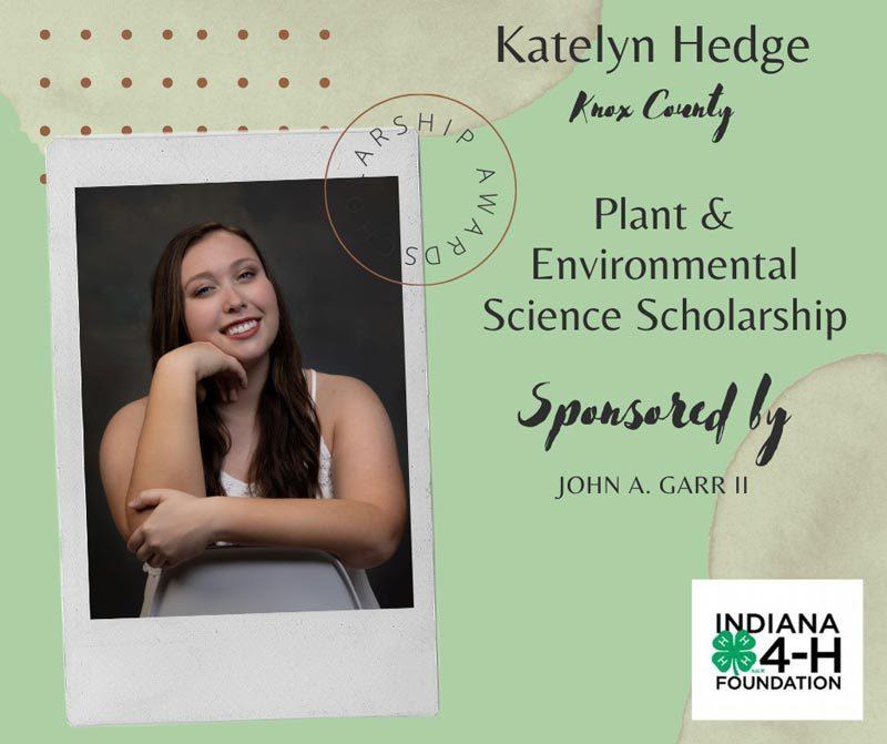 Katelyn-Hedge