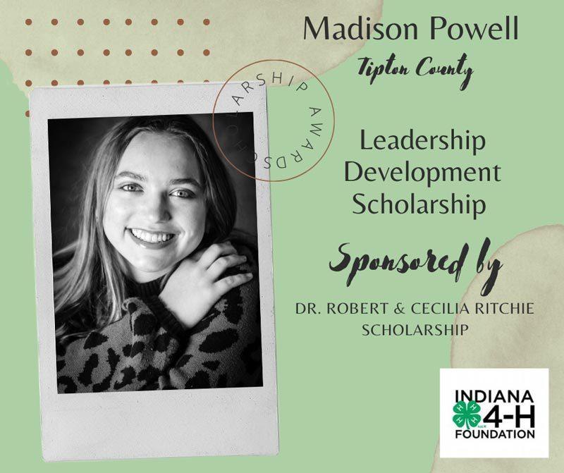 Madison-Powell